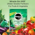 MG - WSF (Water Soluble Fertilizer) - For Fruits & Vegetable.  250g.